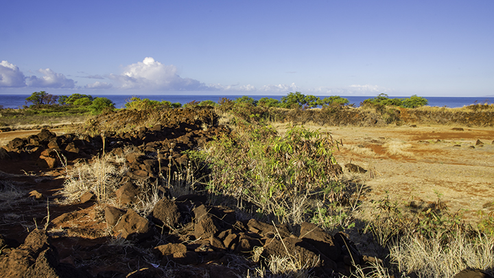 A fort for planning the Russian conquest of Hawaii.