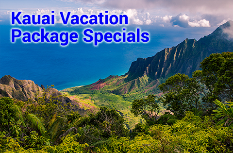 Kauai Vacation Package Specials - B. Inouye 480x315
