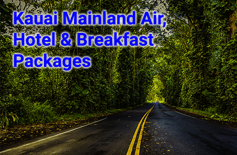 Kauai Mainland Air, Hotel & Breakfast Packages 480x315 - B. Inouye